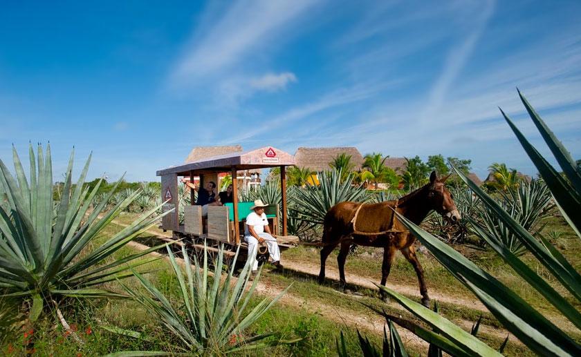 Hacienda henequera Sotuta de Peon Yucatan